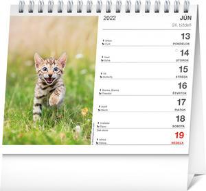 Obrázok Mačky s menami mačiek 2022 - stolový kalendár