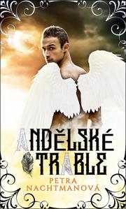 Obrázok Andělské trable