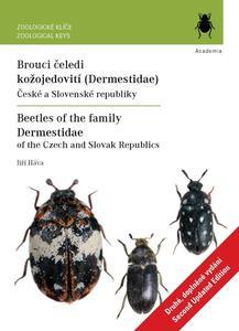 Obrázok Brouci čeledi kožojedovití (Dermestidae)